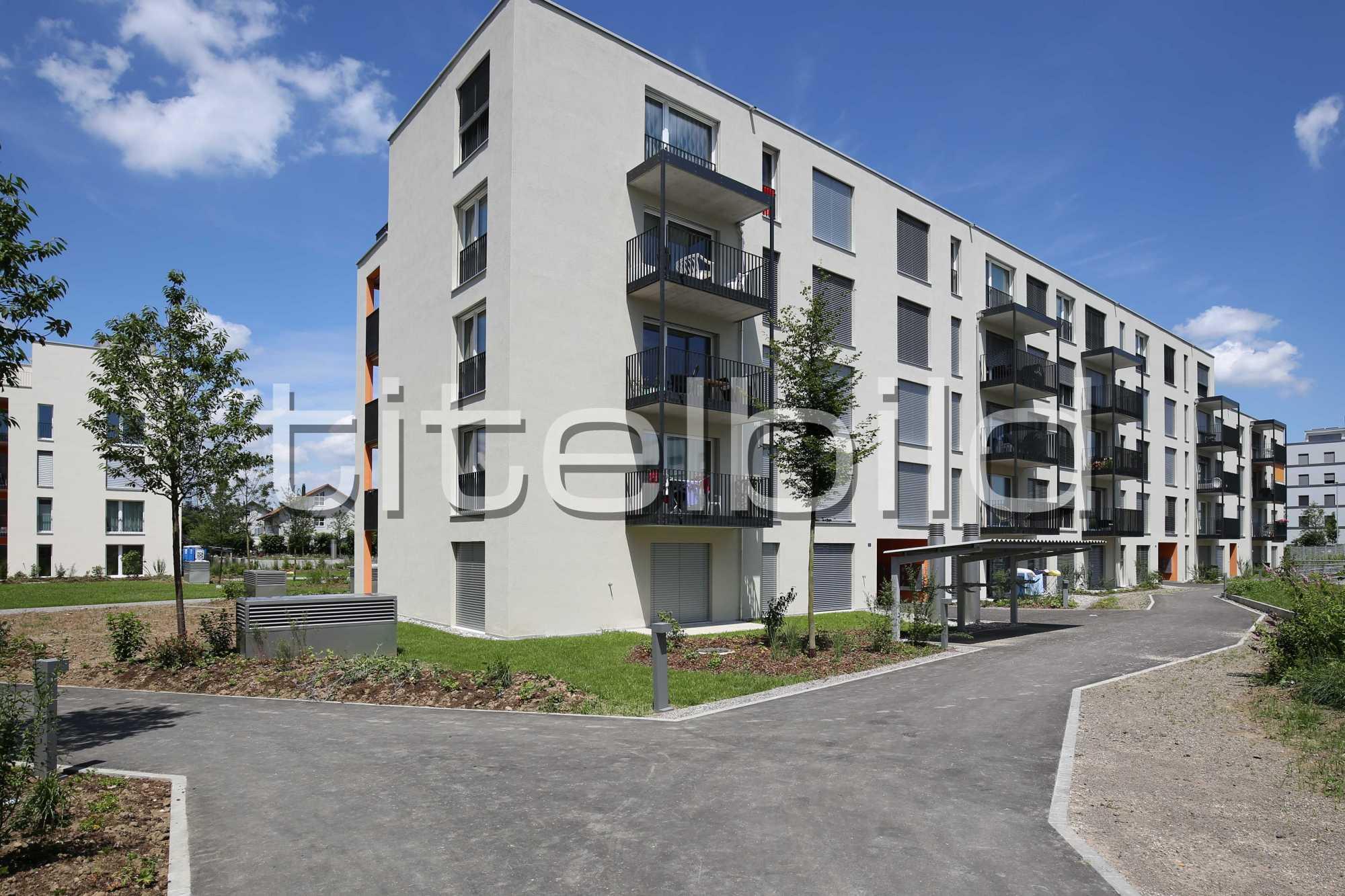 Projektbild-Nr. 1: Sternenfeld