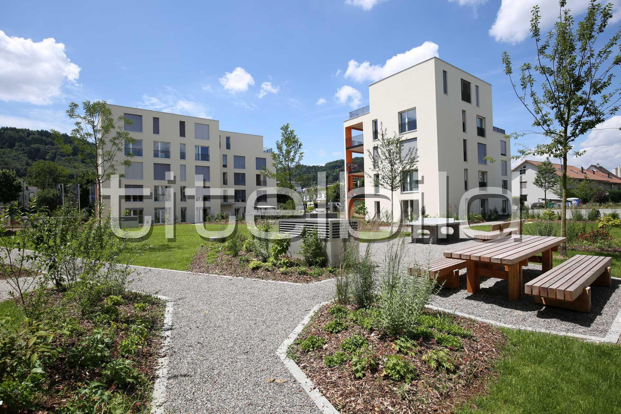 Projektbild-Nr. 5: Sternenfeld