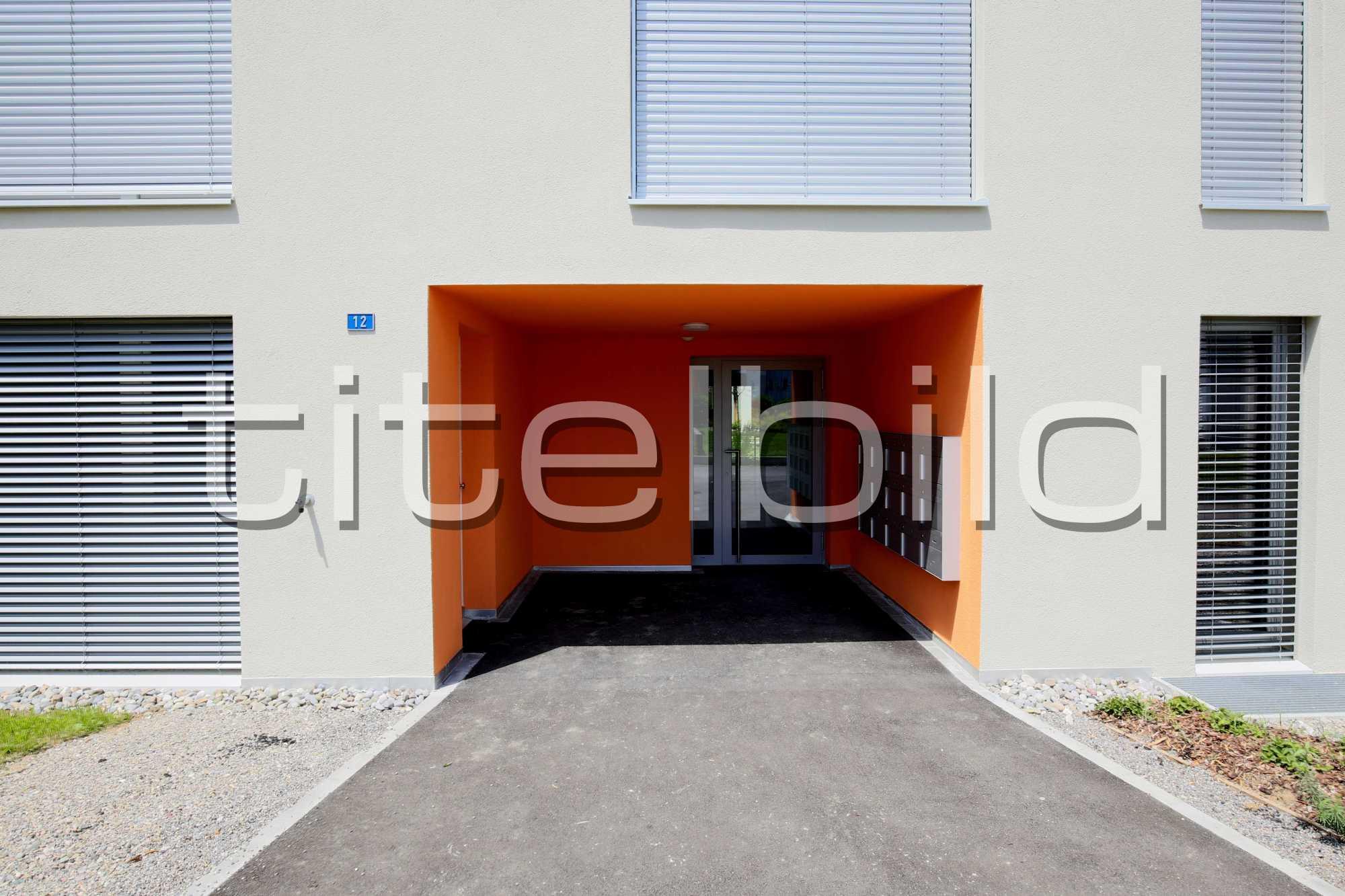 Projektbild-Nr. 7: Sternenfeld