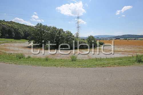 Bild-Nr: 1des Objektes K10 Naturschutzmassnahmen Chernensee/Bodenaufwertung Lee