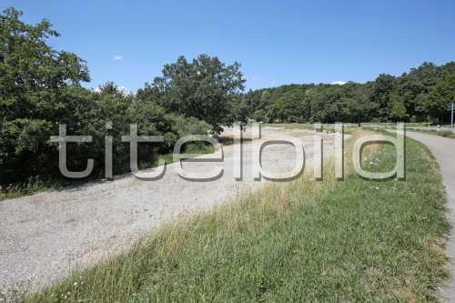 Bild-Nr: 3des Objektes K10 Naturschutzmassnahmen Chernensee/Bodenaufwertung Lee