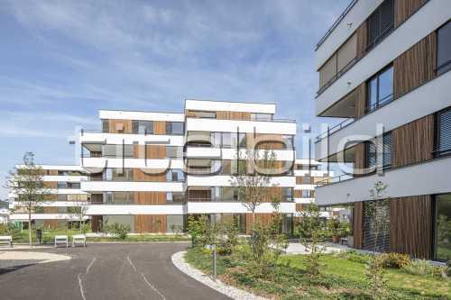 Bild-Nr: 4des Objektes 8 MFH, Lindengarten, 6252 Dagmersellen