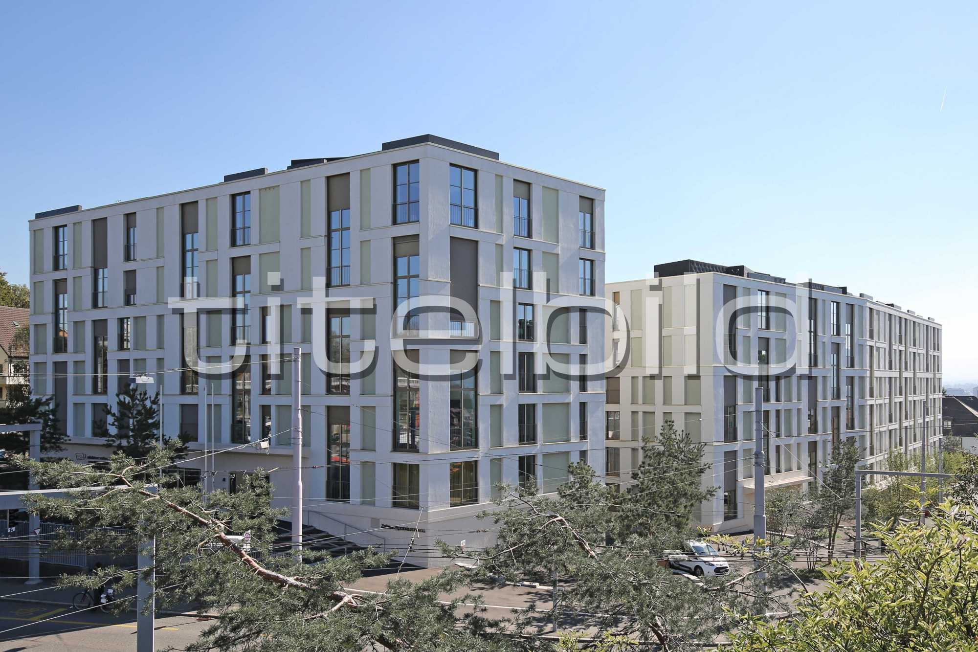 Projektbild-Nr. 3: Siedlung Buchegg