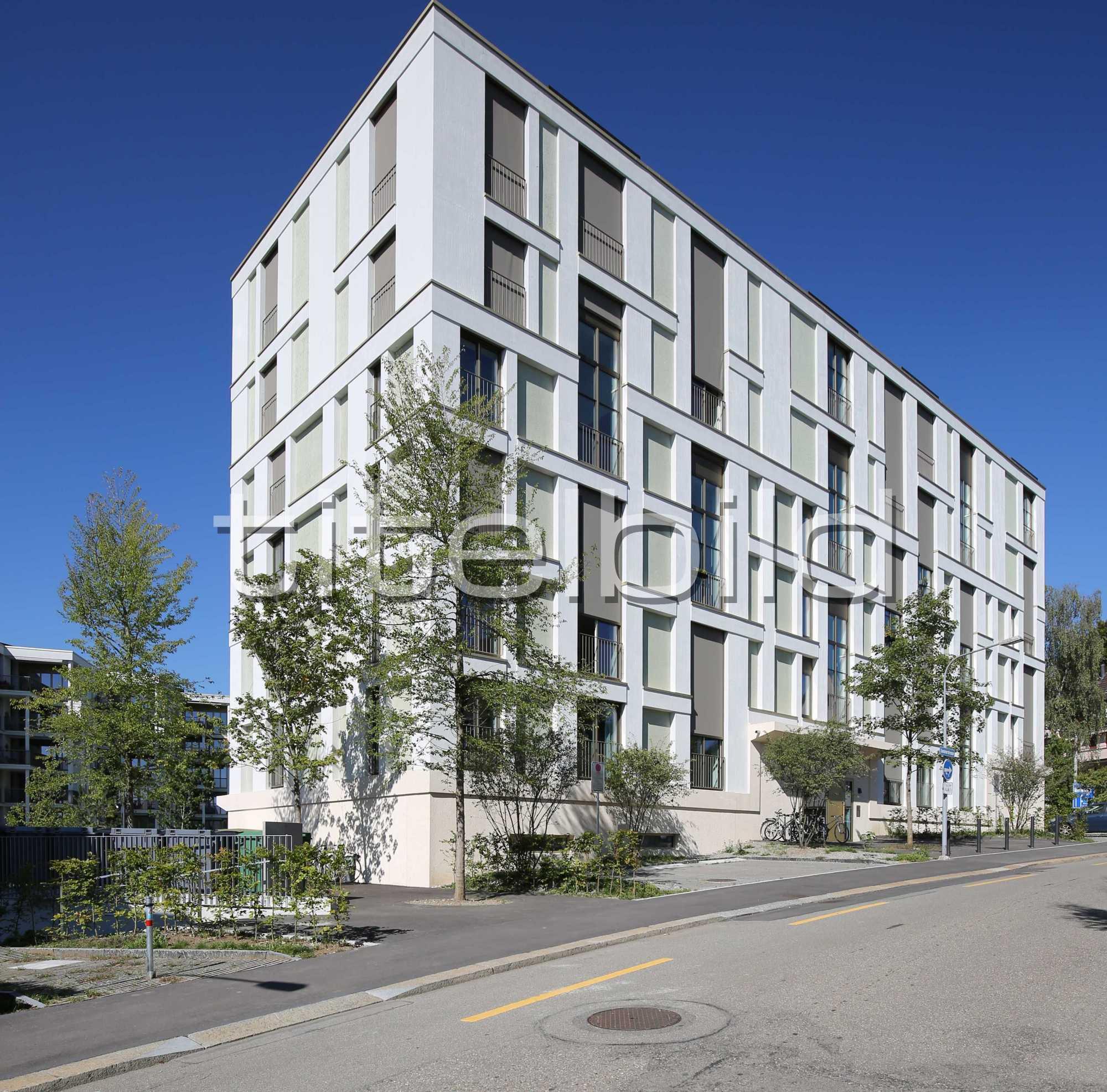 Projektbild-Nr. 4: Siedlung Buchegg