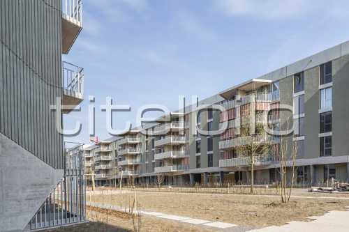 Bild-Nr: 4des Objektes ABZ Siedlung Glattpark