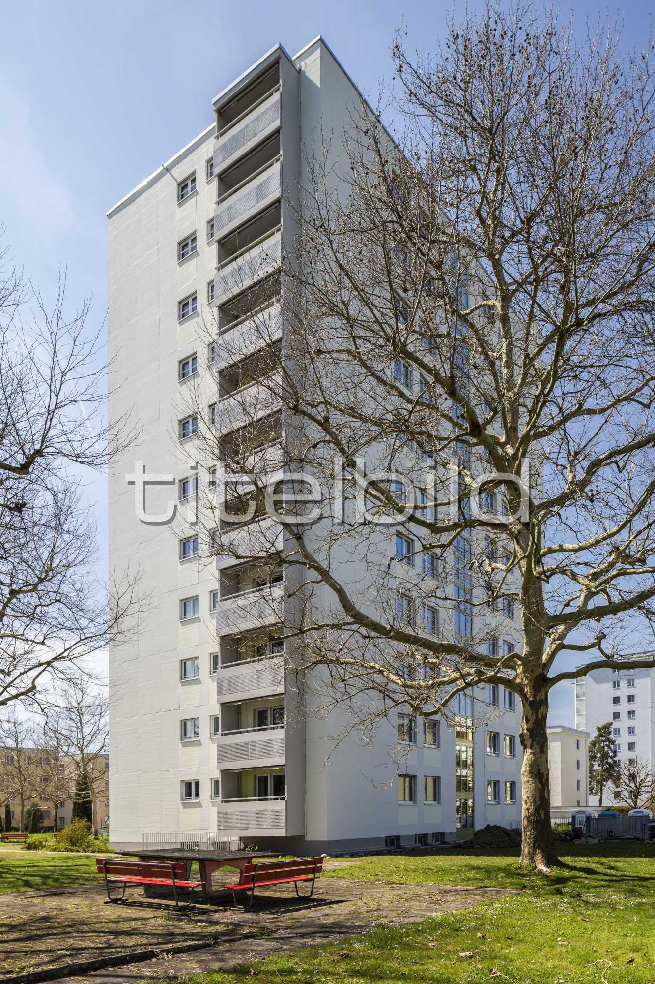 Projektbild-Nr. 3: Waldhofstrasse 54
