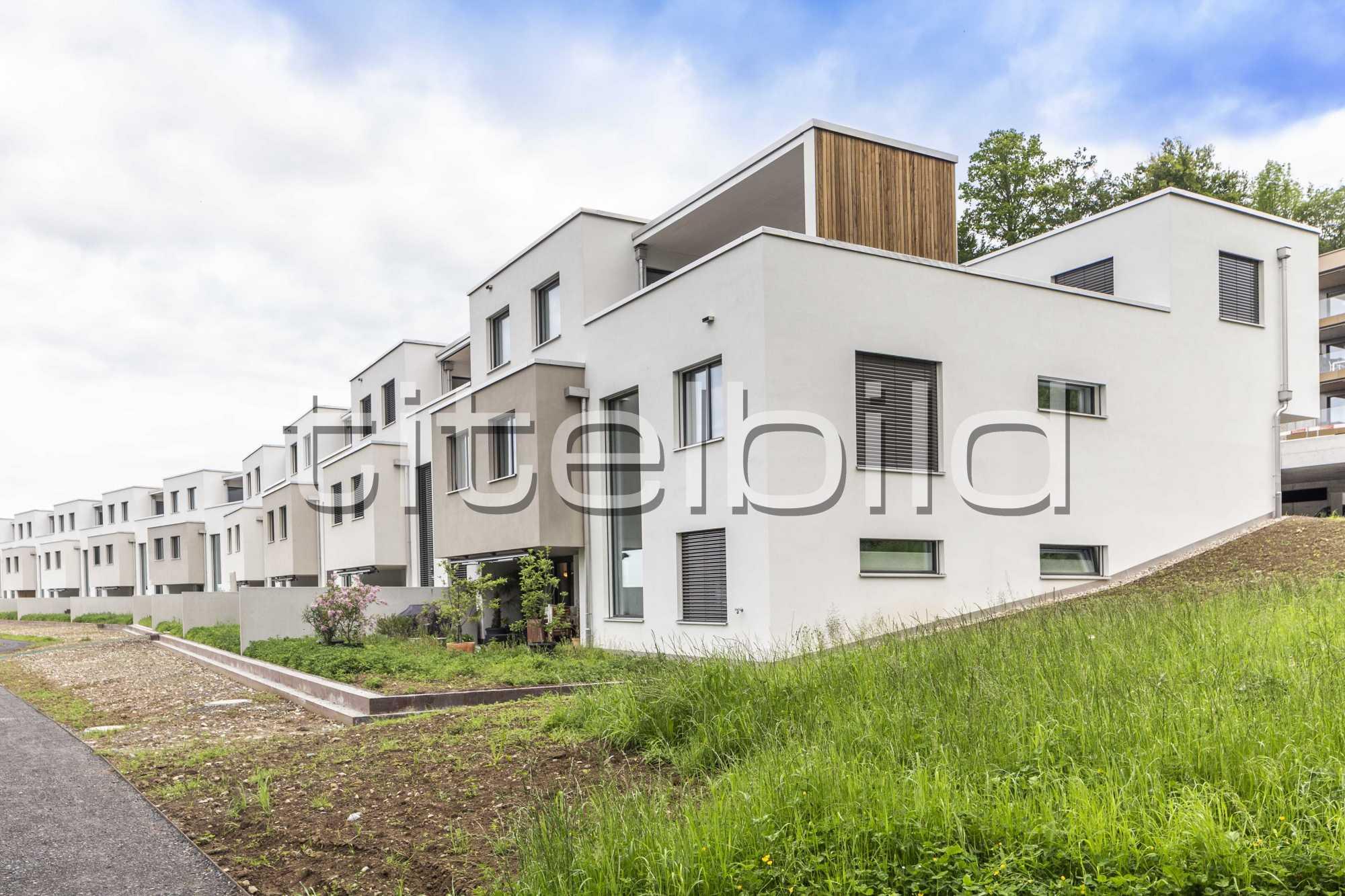 Projektbild-Nr. 1: Kirschgarten am Sempachersee