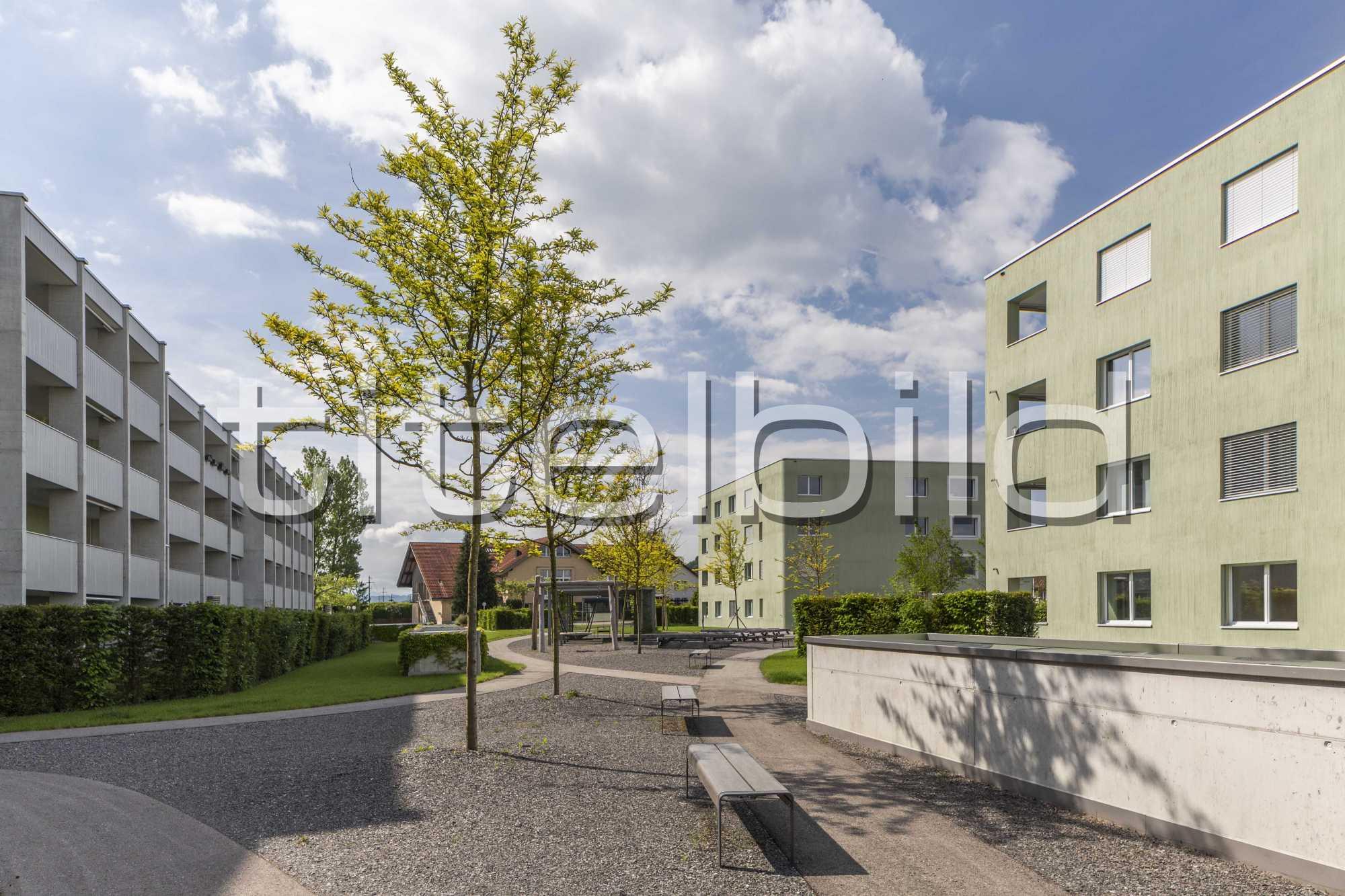 Projektbild-Nr. 7: Parksiedlung Wiggerweg