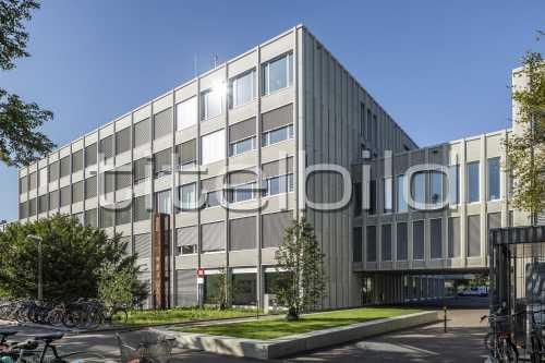 Bild-Nr: 1des Objektes Schulanlage Bäumlihof Gesamtsanierung
