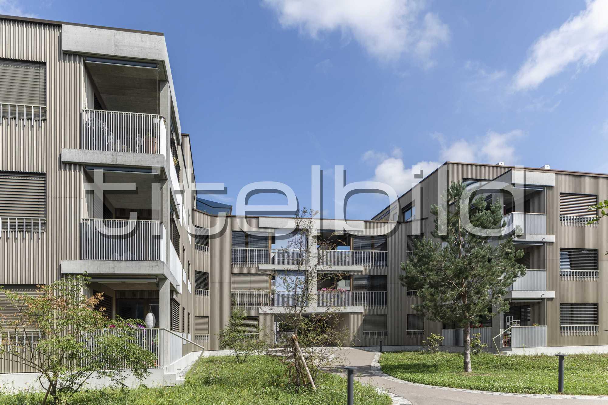 Projektbild-Nr. 0: Neubau Siedlung Riedgraben (Siedlungslokal)
