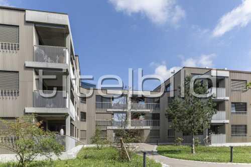 Bild-Nr: 1des Objektes Neubau Siedlung Riedgraben (Siedlungslokal)