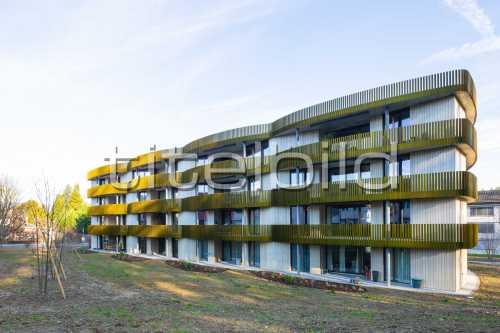 Bild-Nr: 1des Objektes Ersatzneubau Wohnbaugenossenschaft Goldern